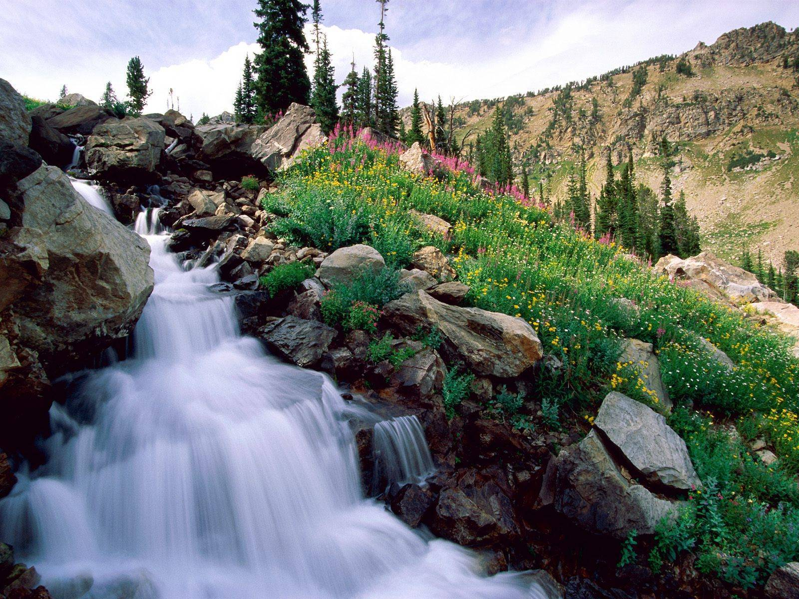 national park water wallpaper - photo #36