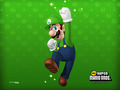 luigi - New Super Mario Brothers wallpaper