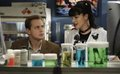 Pauley Perrette on NCIS - pauley-perrette screencap