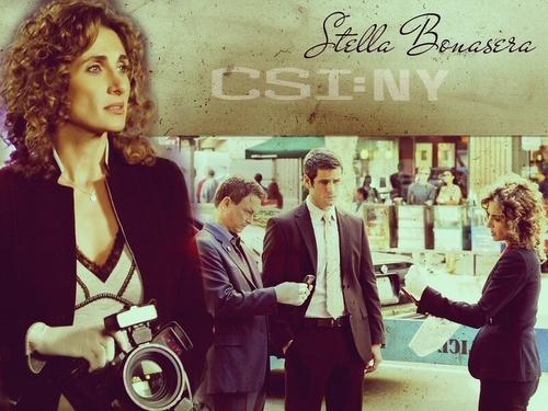 CSI - Scena del crimine - NY wallpaper containing a strada, via titled Stella