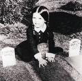 Wednesday Addams - addams-family photo