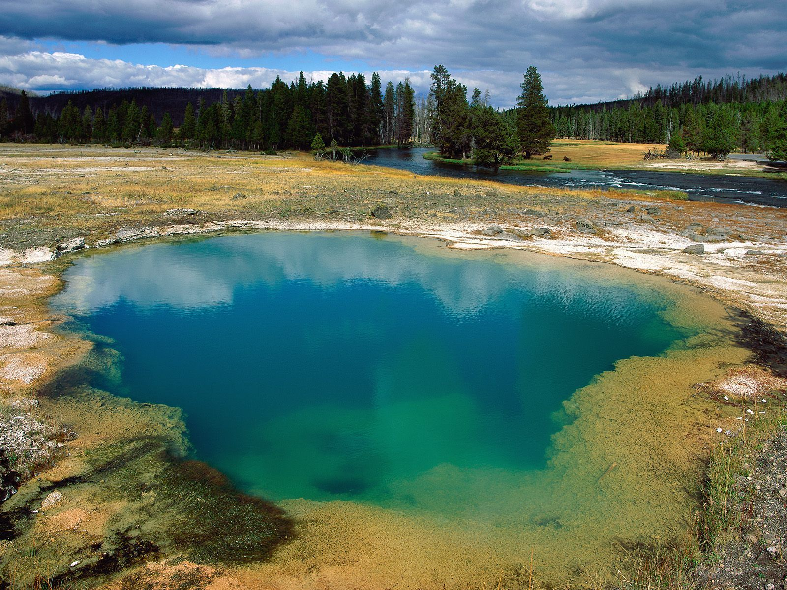 usa national parks images yellowstone hd wallpaper and