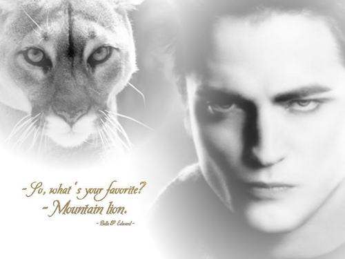 edward with lion