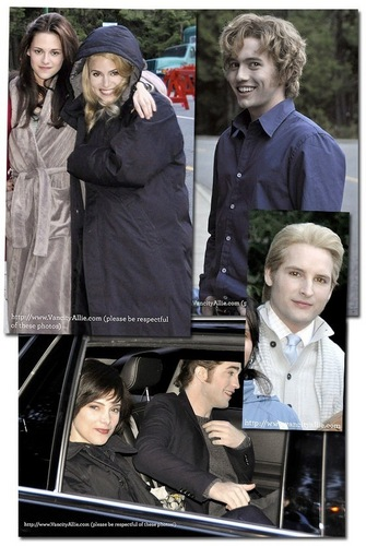 Twilight Saga Фильмы Обои possibly with a business suit entitled new-moon-birthday-party-vancouver-set
