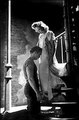 A Streetcar Named Desire - classic-movies photo