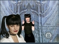 ncis - Abby - the miracle-working forensic scientist wallpaper
