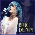 Blue Denim - stevie-nicks fan art