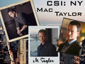 CSI: NY Wallpaper
