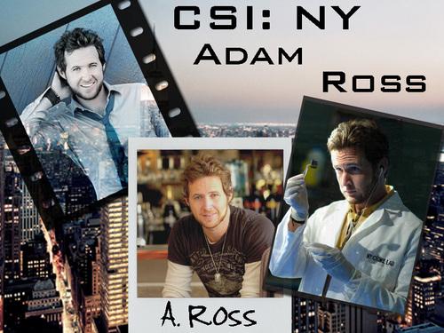 CSI: NY 壁紙