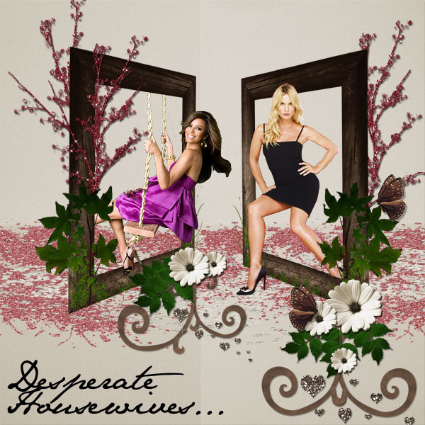 http://images2.fanpop.com/images/photos/5700000/DH-desperate-housewives-5778476-600-600.jpg