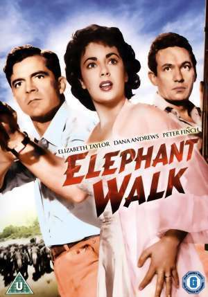 象, 大象 Walk