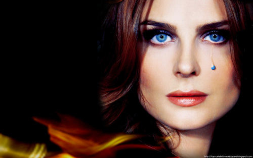 Emily Deschanel wallpaper probably with a portrait titled Emily