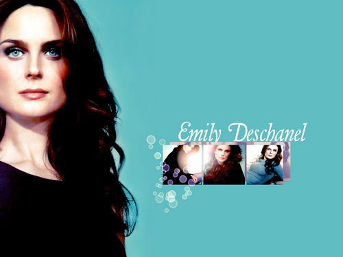 Emily Deschanel Обои with a portrait called Emily