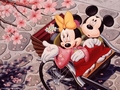 Mickey and Minnie achtergrond