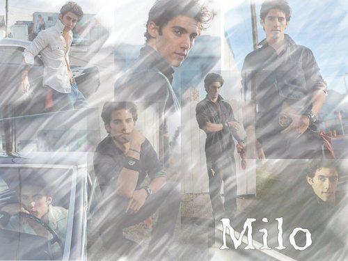 Milo người hâm mộ Art