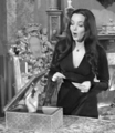 Morticia and Thing