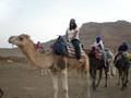 PotterGal on a camel!