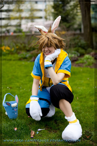 Sora's Hiding Easter Candy