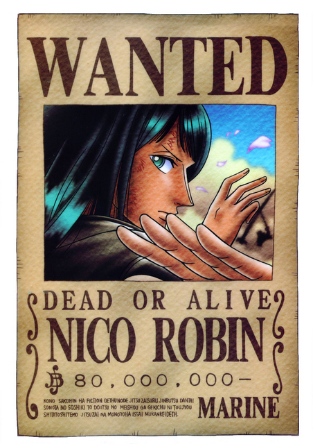 Straw Hats: Wanted - One Piece Photo (5716685) - Fanpop