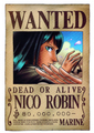 Straw Hats: Wanted - one-piece photo
