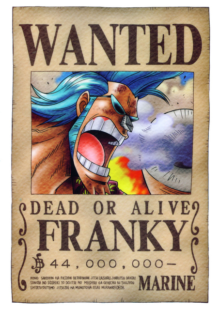 Straw Hats: Wanted - One Piece Photo (5716789) - Fanpop