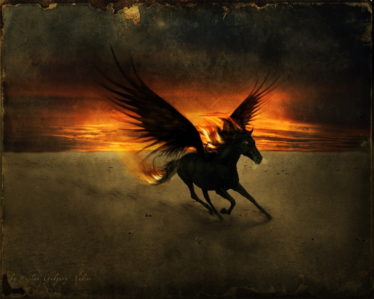 Fantasy Animals The Black PegasusBlack Pegasus