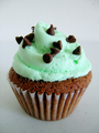 cupcake with mint frosting  - cupcakes photo