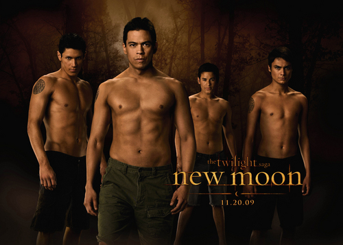 new moon serigala, wolf pack