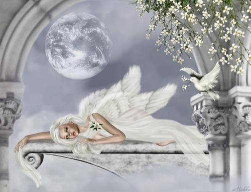 Asleep ángel