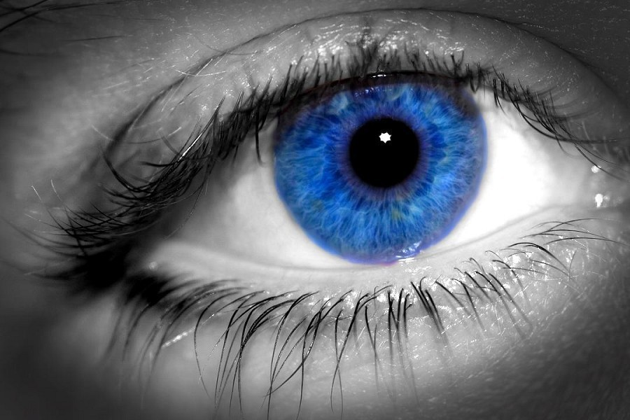 Blue Eyes images Blue eyes HD wallpaper and background photos