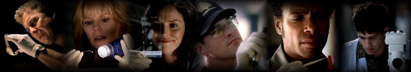 CSI Banner - csi fan art