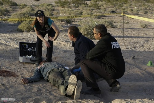 CSI Las Vegas- 9.24- All in- Promotional تصاویر