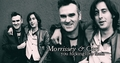 Carl + Morrisey Banner