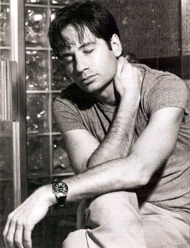 david duchovny hot. hot David Duchovny, and Steve