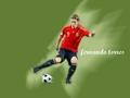 Fernando Torres Hintergrund