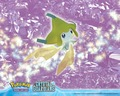 pokemon - Jirachi_Crystal_guardian wallpaper