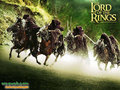 Lord of the Rings  - lord-of-the-rings wallpaper