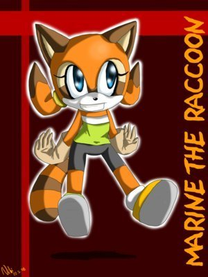 Marine the Raccoon