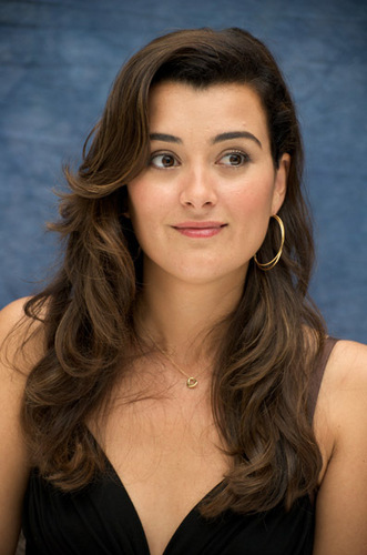 NCIS wallpaper with a portrait entitled NCIS Press Conference - Cote De Pablo