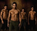 New Moon Wolves - twilight-series photo