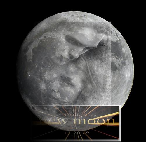 Siri-siri Twilight kertas dinding possibly containing a sand dollar entitled New Moon