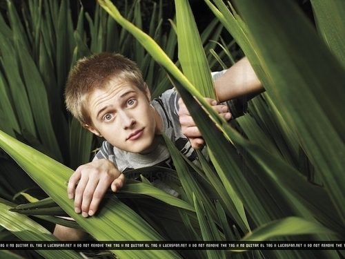 Lucas Grabeel wallpaper with a banana and common bamboo titled People Photoshoot