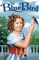 Shirley Temple in The Blue Bird - shirley-temple photo