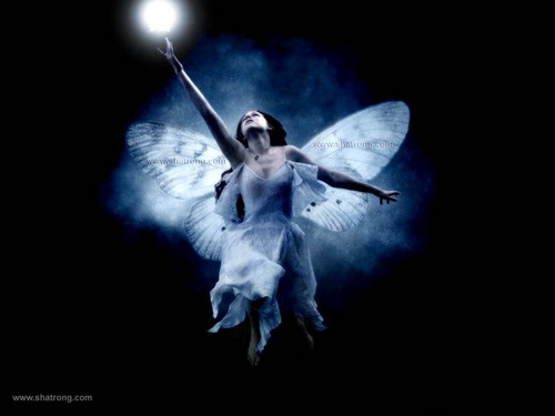 Star Fairy - mystical-women Wallpaper