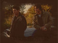 Supernatural -Winchester Brothers - horror-and-sci-fi-television wallpaper