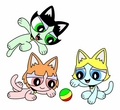 The Powerpuff Kitties
