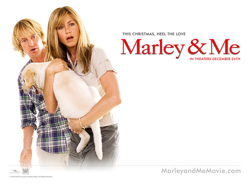 marley and me wallpaper. Wallpaper - Marley And Me 2008