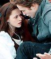 ! TWILIGHT - twilight-series photo