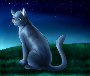 BlueStar, The Caring Leader