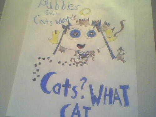 CAT! WHAT CAT ?